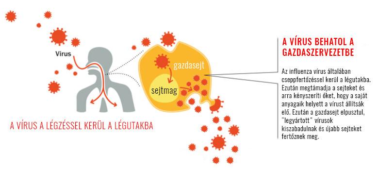 hogy a HIV hogyan befolyásolja az erekciót akupunktúrás erekciós pont