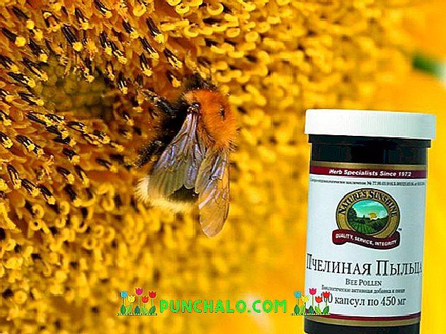 méh pollen és erekció