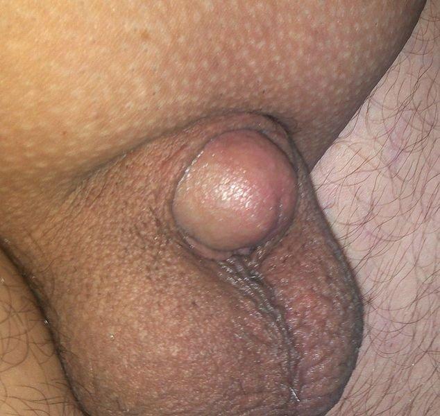 öreg pénisz