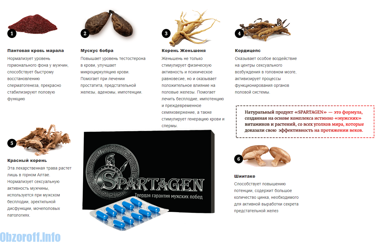 milyen termékek szükségesek az erekció fokozásához