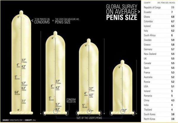 férfi péniszméretek és -típusok