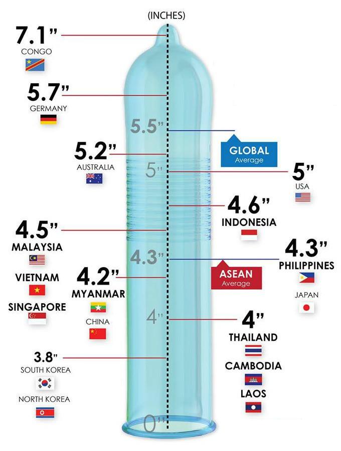 pénisz mérete és átmérője