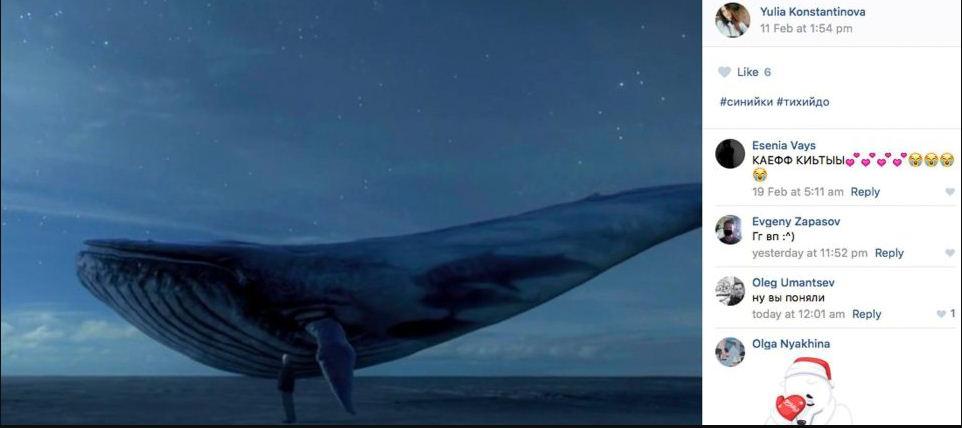 bálna kék pénisz)