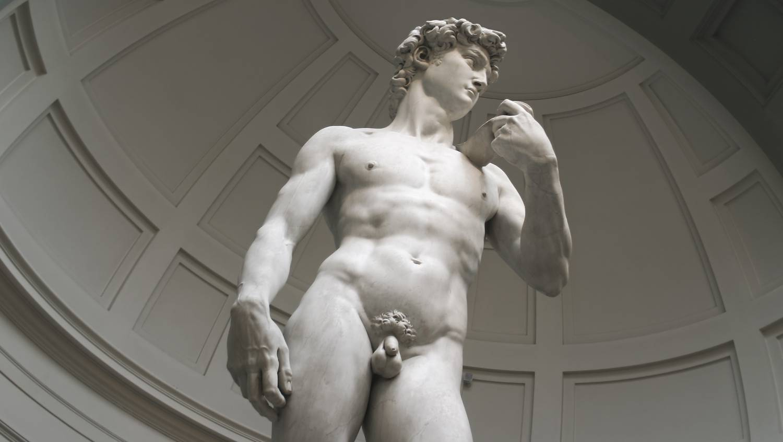 férfi szervtípusok az erekcióban