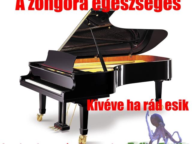 pénisz a zongorán