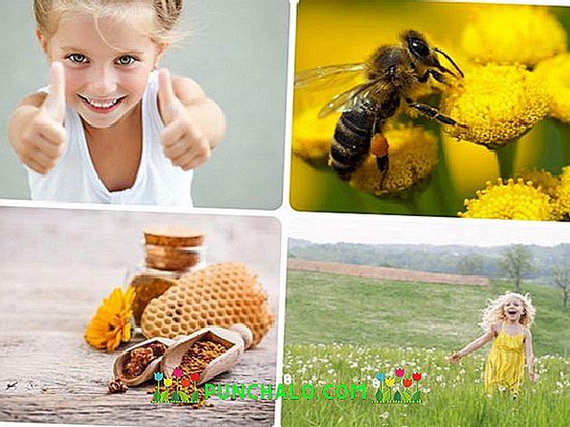 méh pollen és erekció)