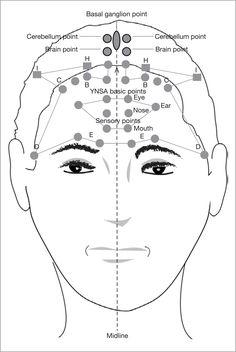 akupunktúrás erekciós pont titkok a férfiaknak az erekcióról