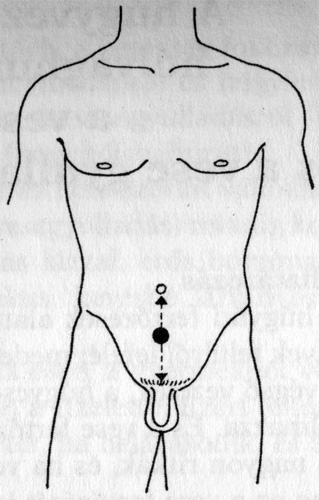 gyógyszerek gyógyszertárakban történő felállítására ha az erekció nem csökken